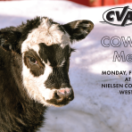CVA Cow/Calf Meeting Invite